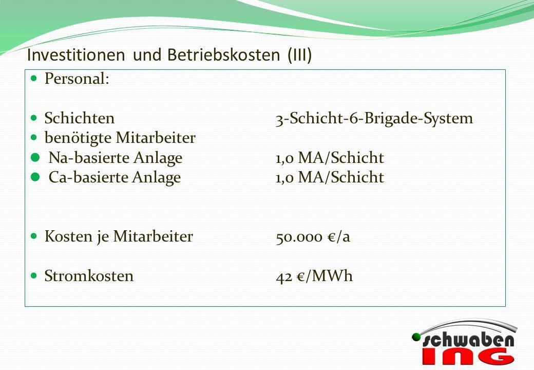 Investitionen und Betriebskosten (III)