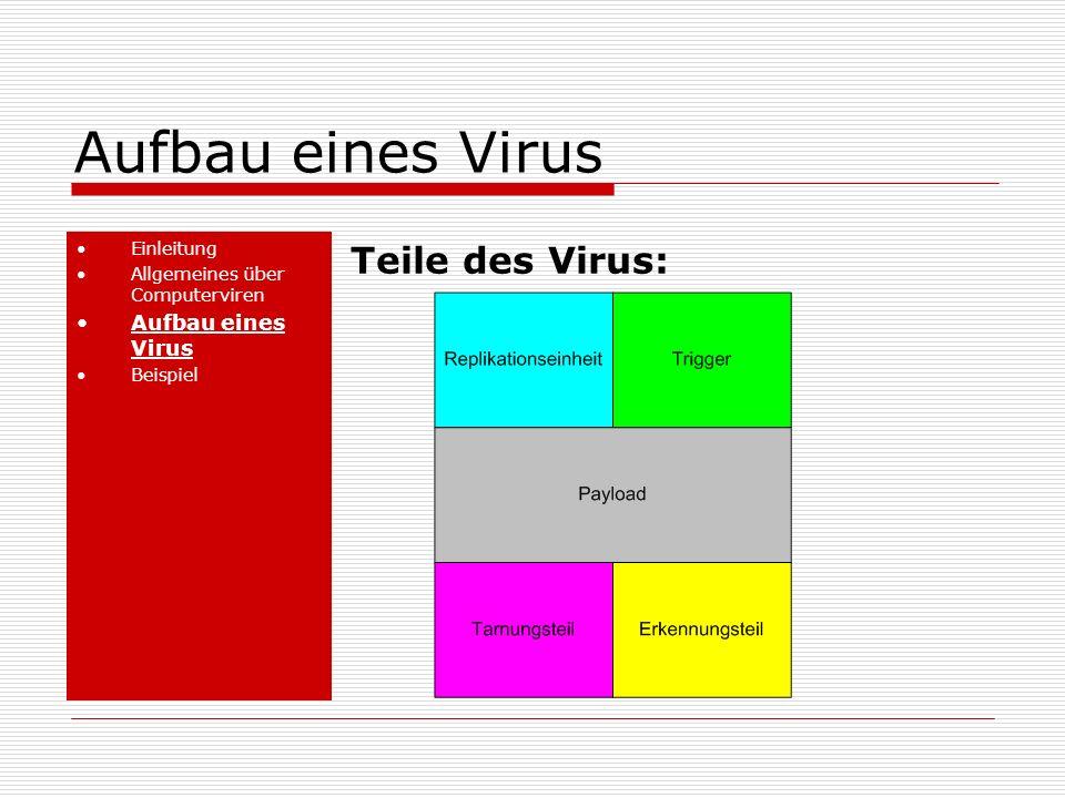 Aufbau eines Virus Teile des Virus: Aufbau eines Virus Einleitung