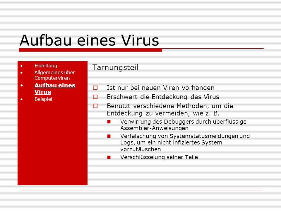 Aufbau eines Virus Tarnungsteil Ist nur bei neuen Viren vorhanden