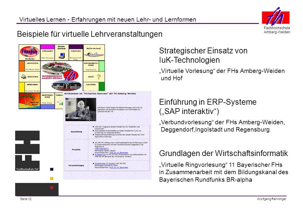 Beispiele für virtuelle Lehrveranstaltungen