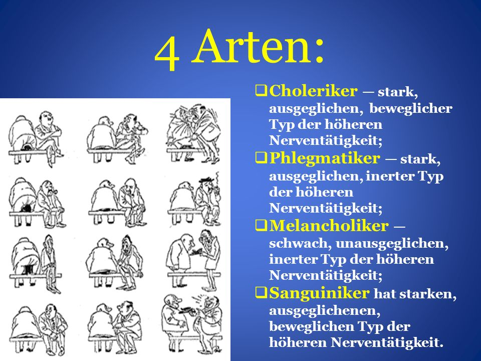 4 Arten: Choleriker — stark, ausgeglichen, beweglicher Typ der höheren Nerventätigkeit;