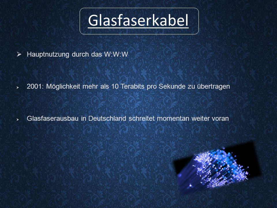 Glasfaserkabel Hauptnutzung durch das W:W:W