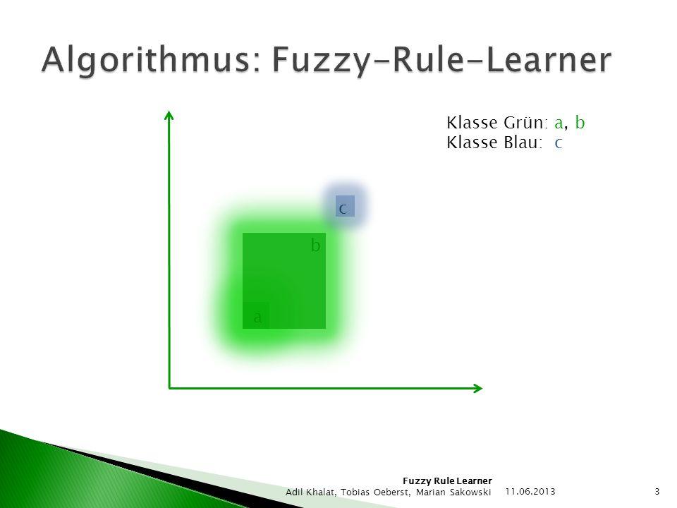 Algorithmus: Fuzzy-Rule-Learner