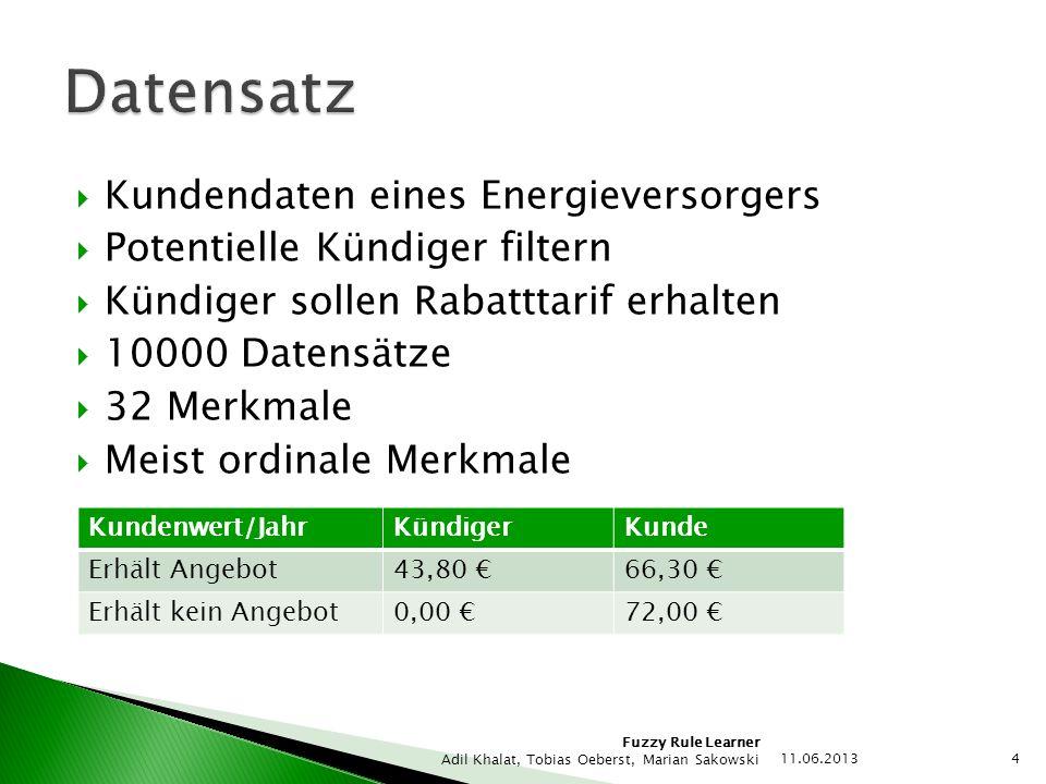 Datensatz Kundendaten eines Energieversorgers