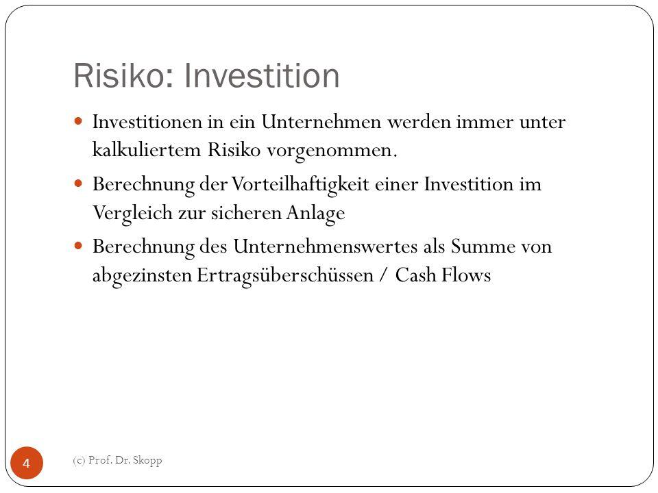 Risiko: Investition Investitionen in ein Unternehmen werden immer unter kalkuliertem Risiko vorgenommen.
