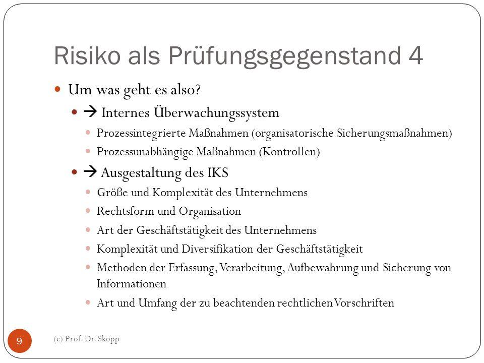 Risiko als Prüfungsgegenstand 4