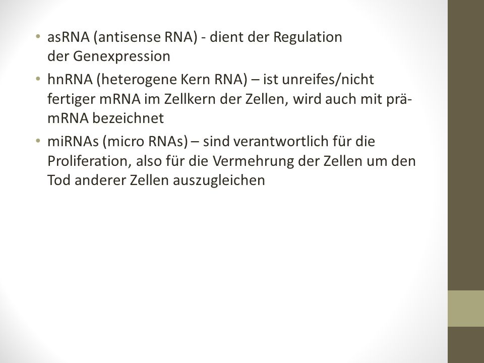 asRNA (antisense RNA) - dient der Regulation der Genexpression