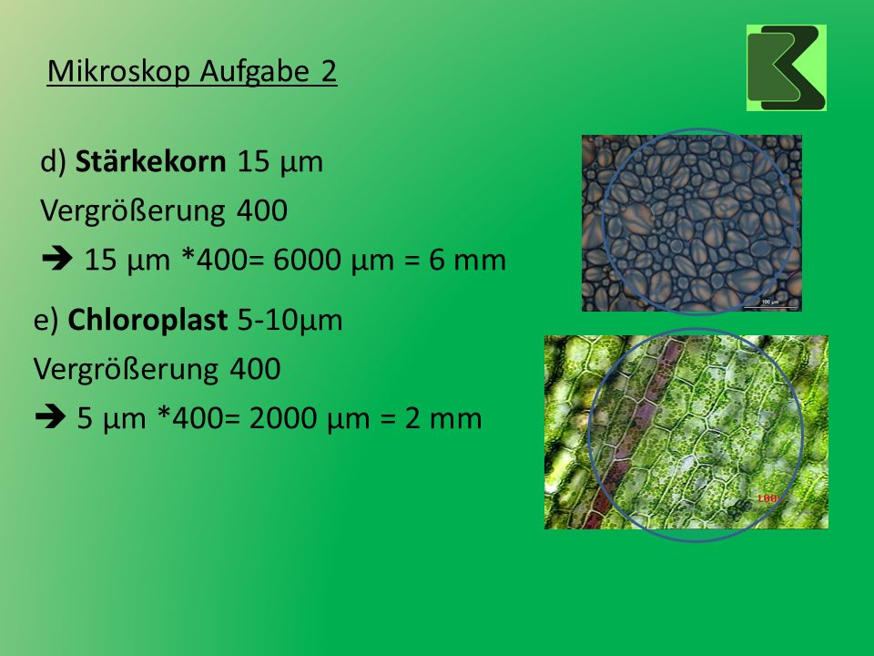 d) Stärkekorn 15 µm Vergrößerung 400  15 µm *400= 6000 µm = 6 mm