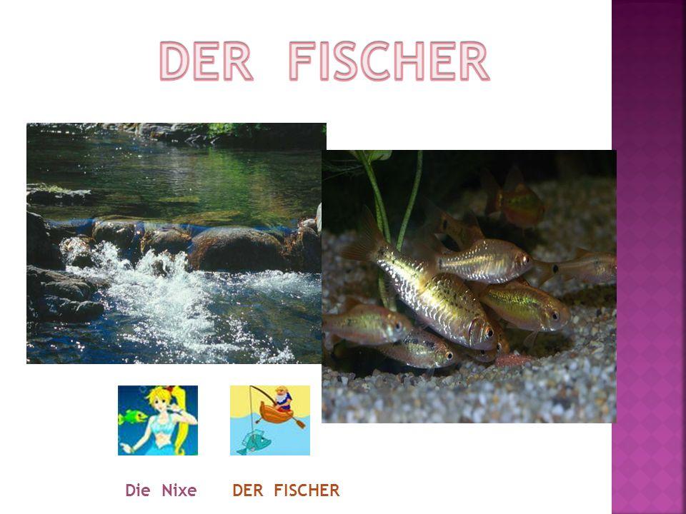 DER FISCHER Die Nixe DER FISCHER