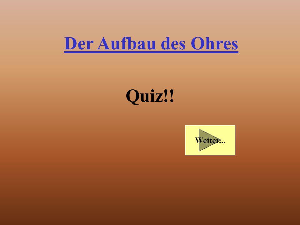 Der Aufbau des Ohres Quiz!!