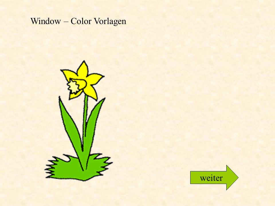 Window – Color Vorlagen