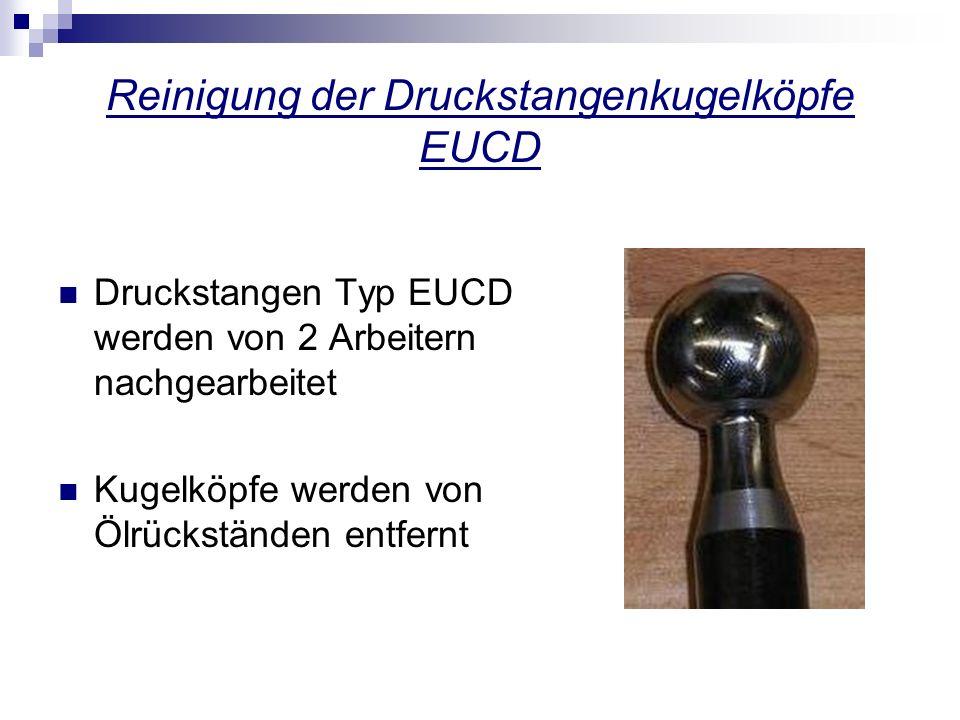 Reinigung der Druckstangenkugelköpfe EUCD