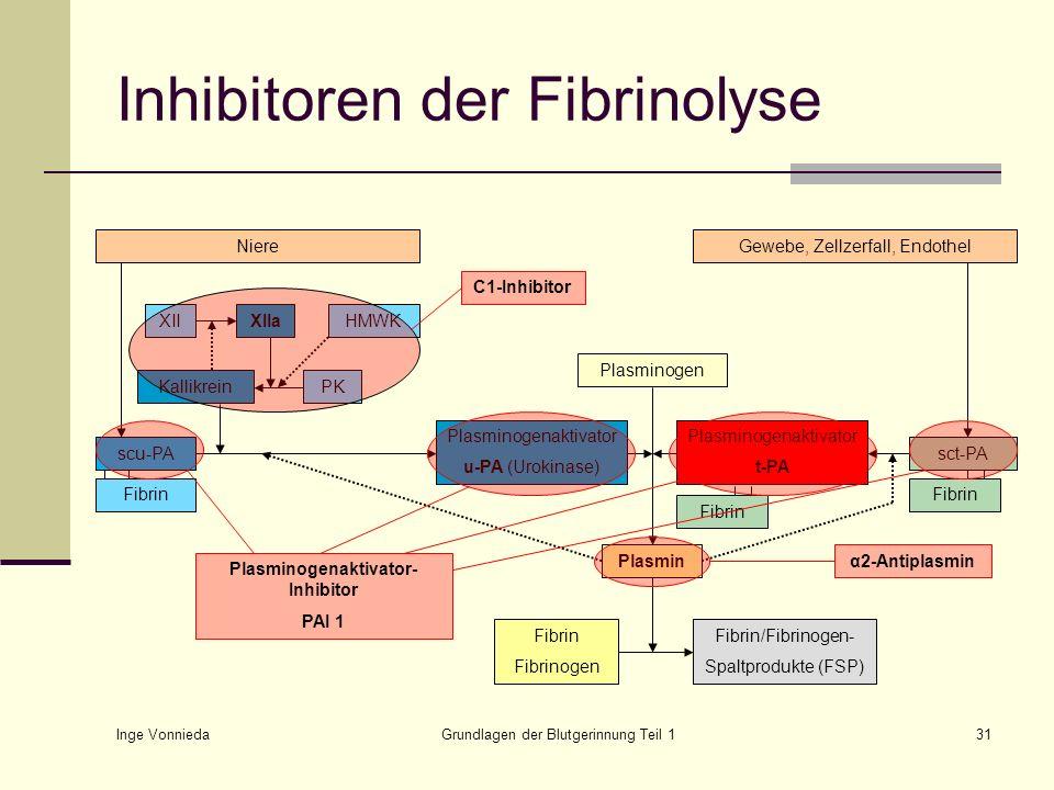 Inhibitoren der Fibrinolyse
