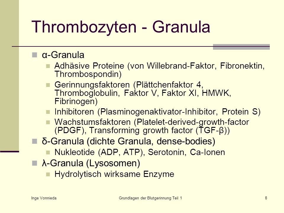 Thrombozyten - Granula