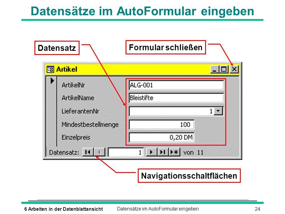 Datensätze im AutoFormular eingeben