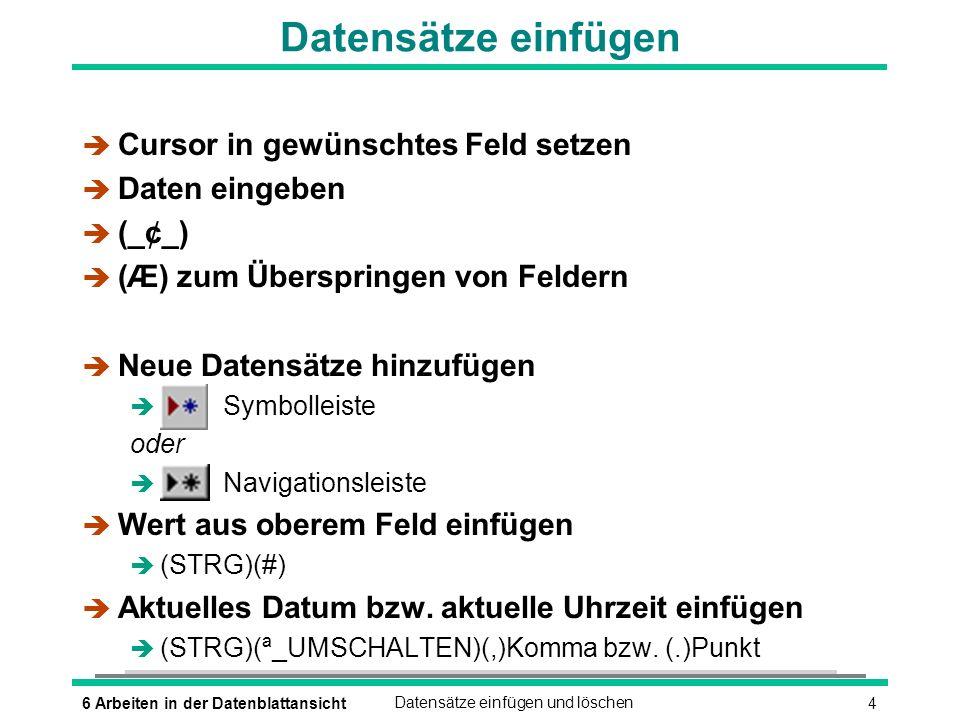 Datensätze einfügen Cursor in gewünschtes Feld setzen Daten eingeben