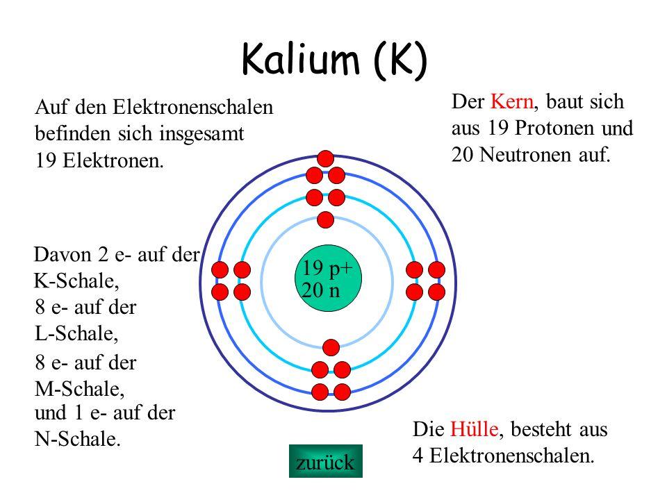 Kalium (K) Der Kern, baut sich Auf den Elektronenschalen