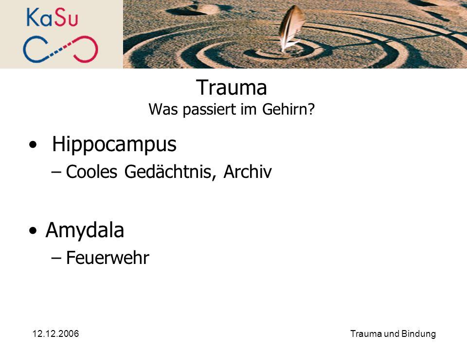Trauma Was passiert im Gehirn