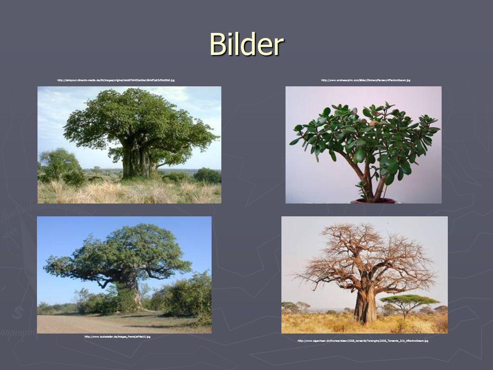 Bilder http://datapool.dimento-media.de/69/images/original/4ab8799453a99a1964df2a25cf9dc5b6.jpg.