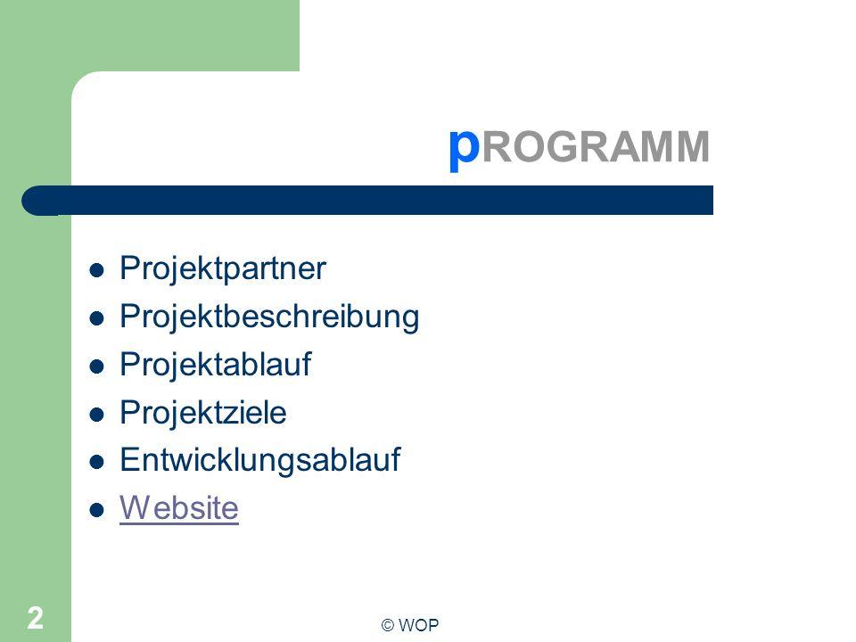 pROGRAMM Projektpartner Projektbeschreibung Projektablauf Projektziele