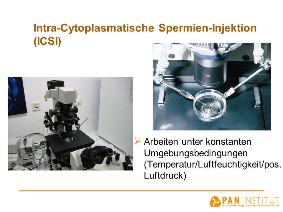 Intra-Cytoplasmatische Spermien-Injektion (ICSI)