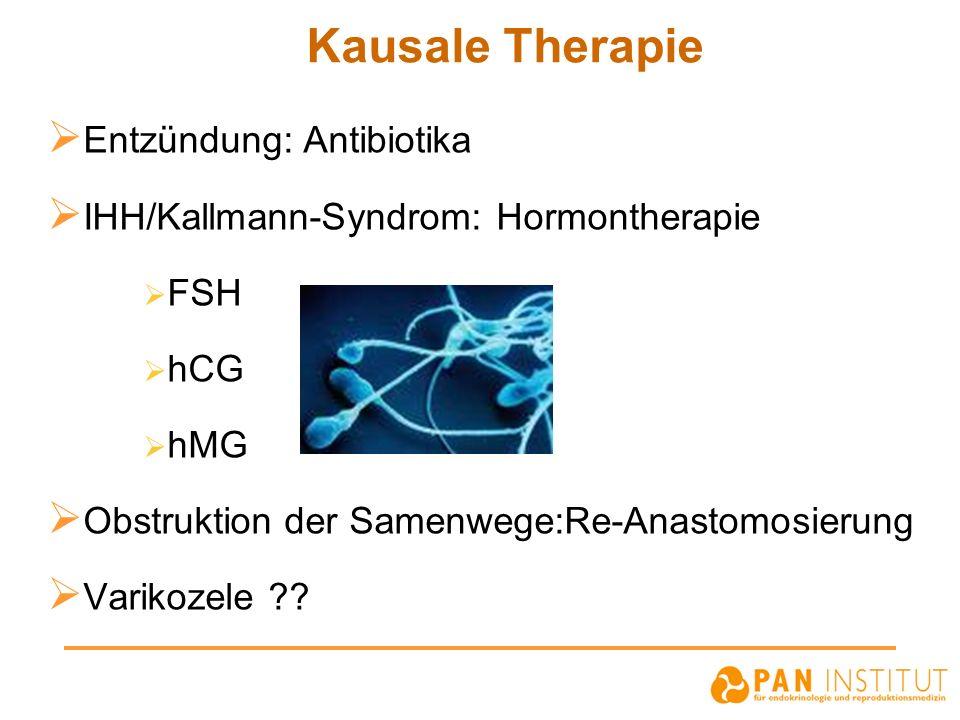 Kausale Therapie Entzündung: Antibiotika