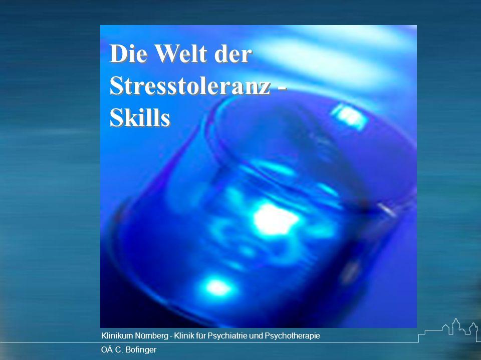 Die Welt der Stresstoleranz - Skills