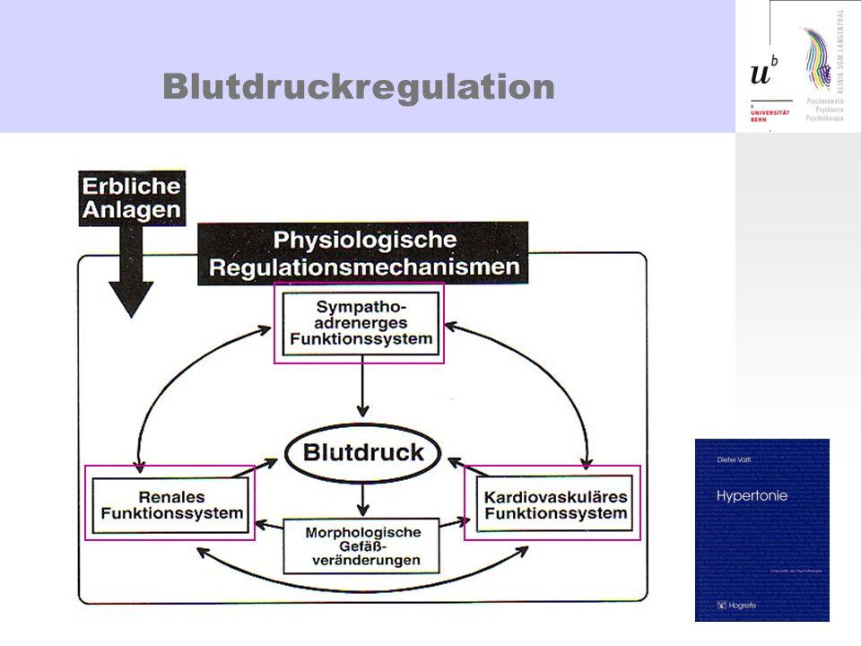 Blutdruckregulation