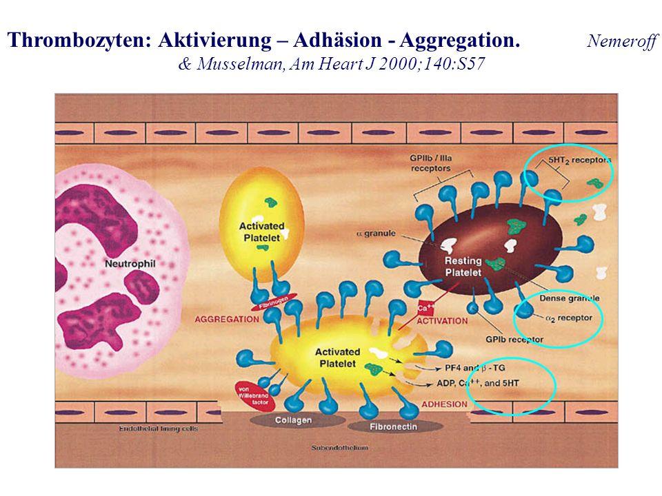 Thrombozyten: Aktivierung – Adhäsion - Aggregation