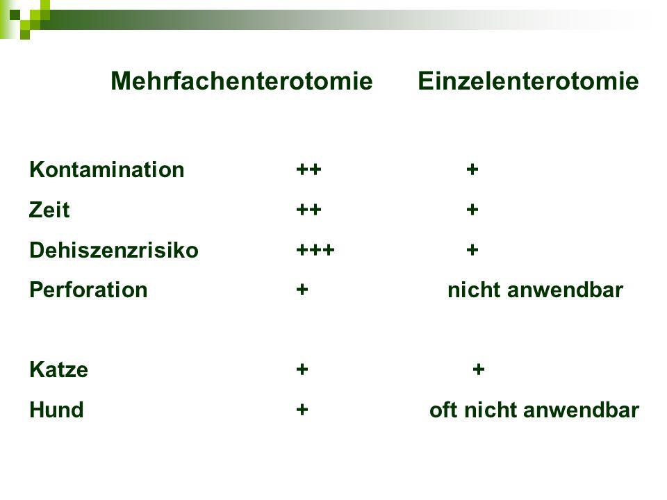 Mehrfachenterotomie Einzelenterotomie