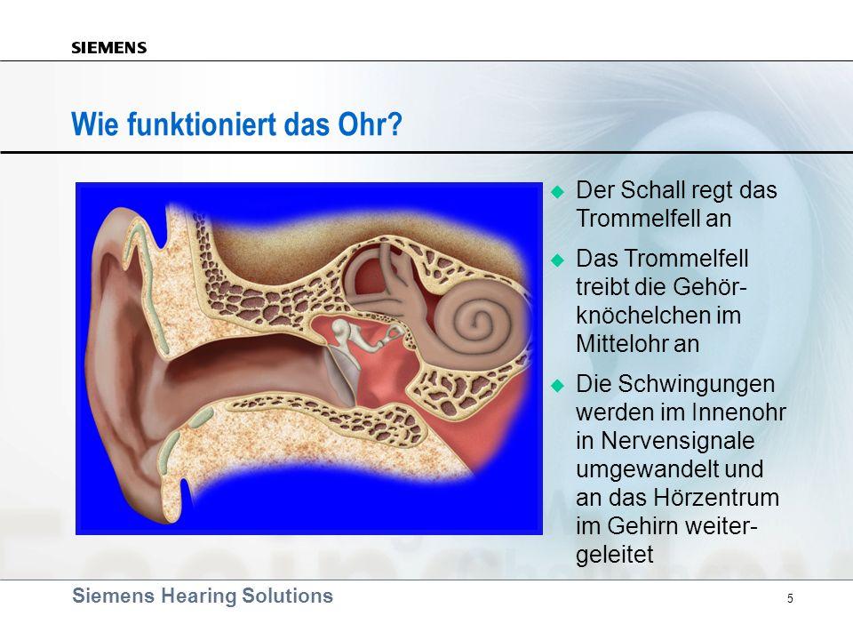 Wie funktioniert das Ohr