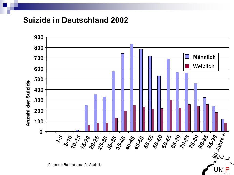 Suizide in Deutschland 2002