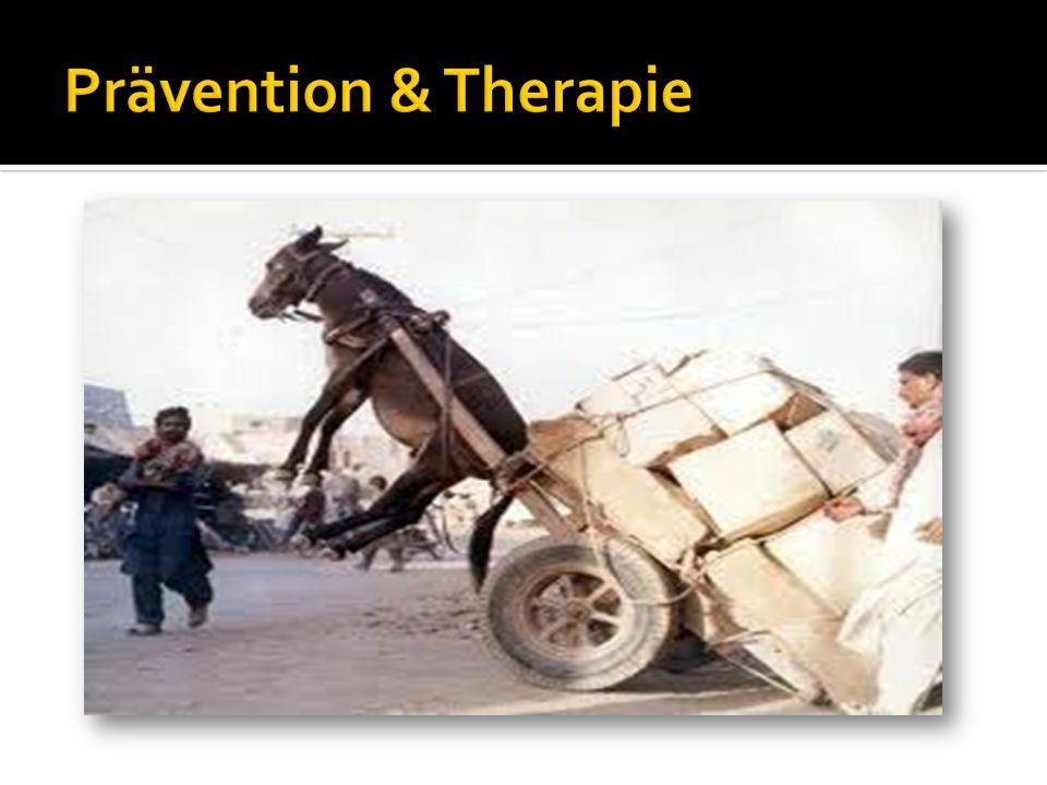 Prävention & Therapie