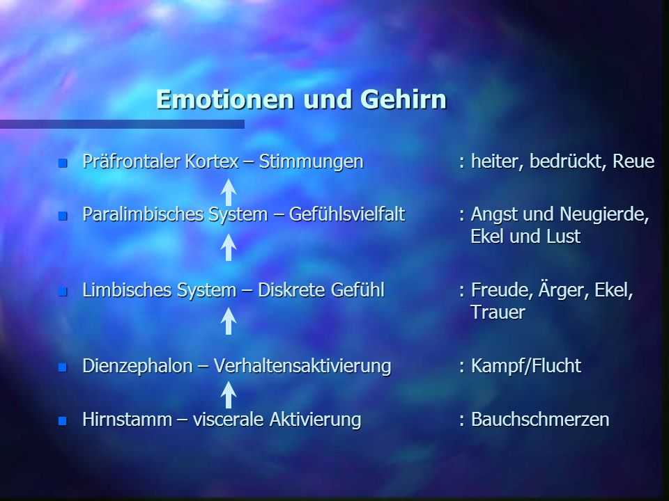 Emotionen und GehirnPräfrontaler Kortex – Stimmungen : heiter, bedrückt, Reue.