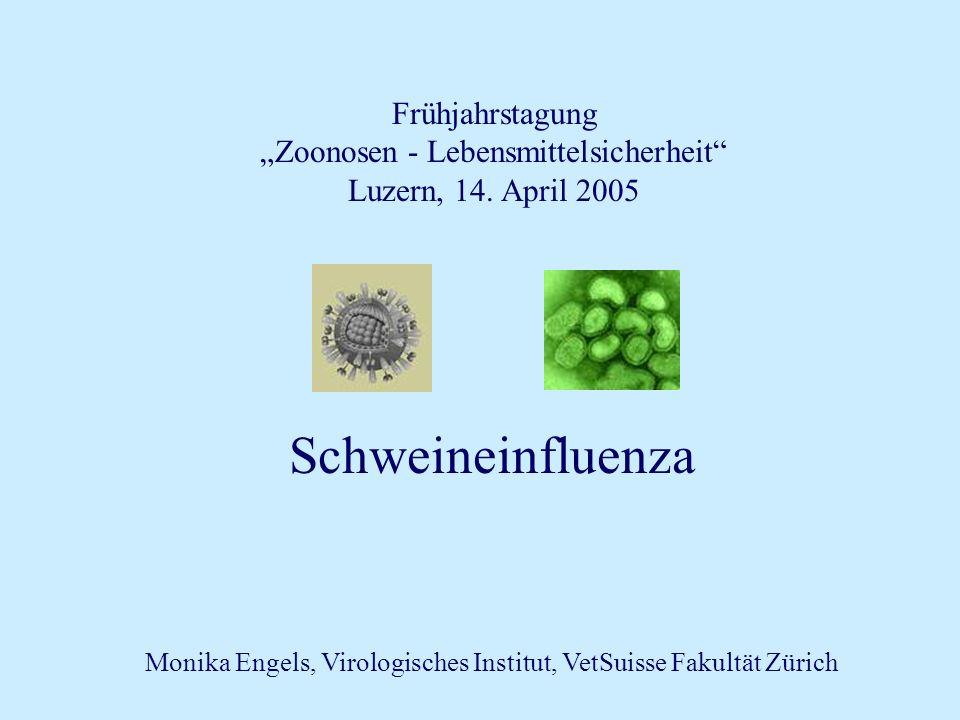 """Schweineinfluenza Frühjahrstagung """"Zoonosen - Lebensmittelsicherheit"""