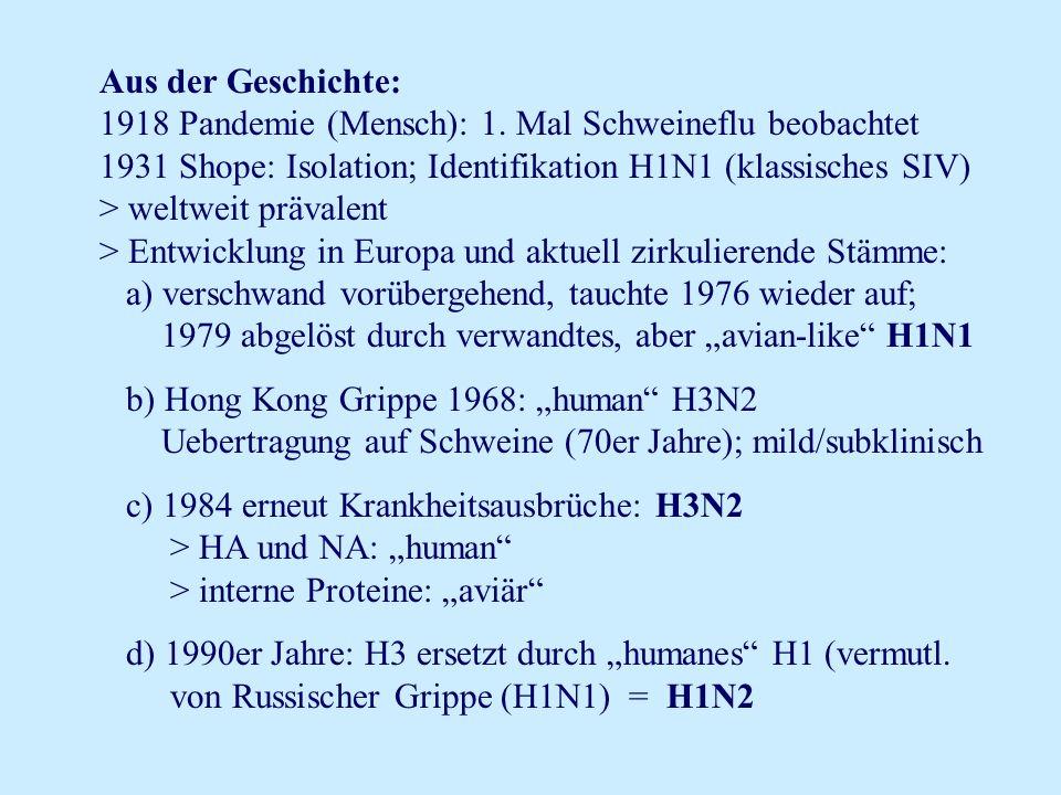 Aus der Geschichte: 1918 Pandemie (Mensch): 1. Mal Schweineflu beobachtet. 1931 Shope: Isolation; Identifikation H1N1 (klassisches SIV)