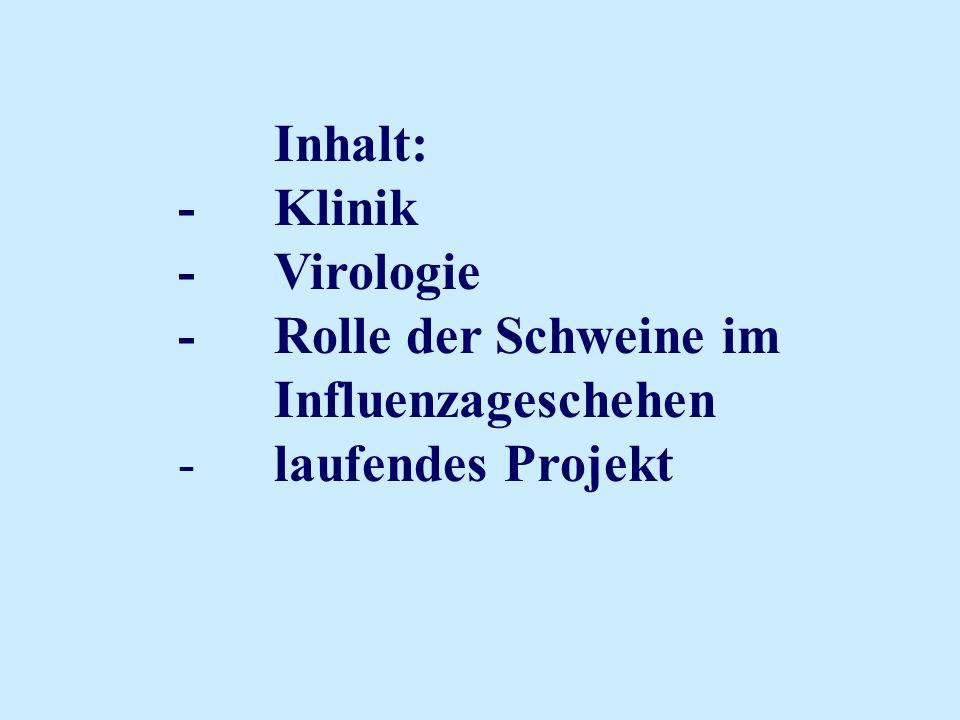 Inhalt: - Klinik - Virologie - Rolle der Schweine im Influenzageschehen - laufendes Projekt