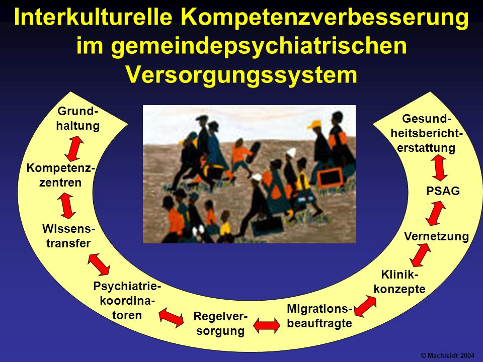 Interkulturelle Kompetenzverbesserung im gemeindepsychiatrischen Versorgungssystem