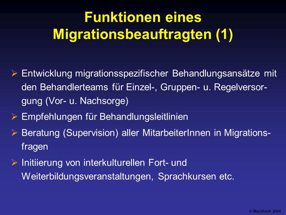 Funktionen eines Migrationsbeauftragten (1)