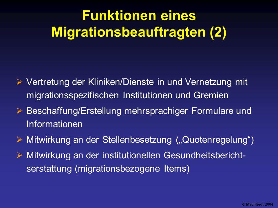 Funktionen eines Migrationsbeauftragten (2)