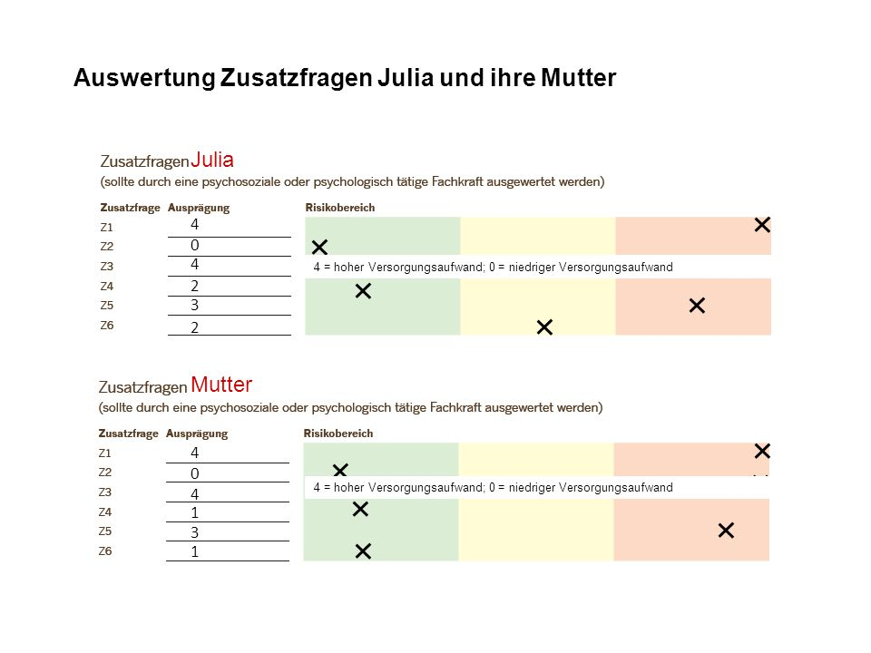 Auswertung Zusatzfragen Julia und ihre Mutter