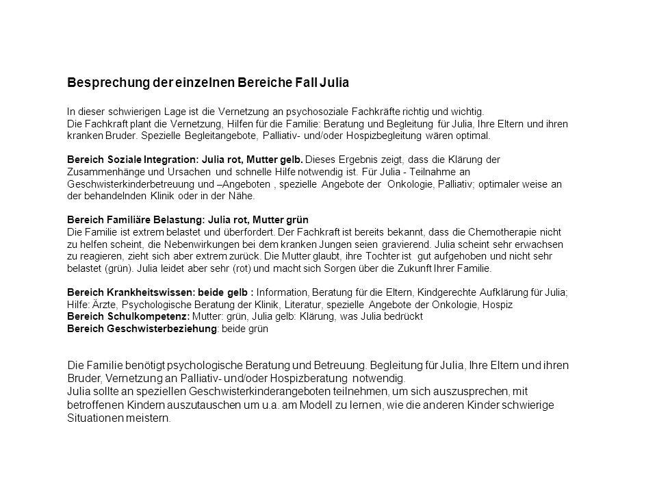 Besprechung der einzelnen Bereiche Fall Julia