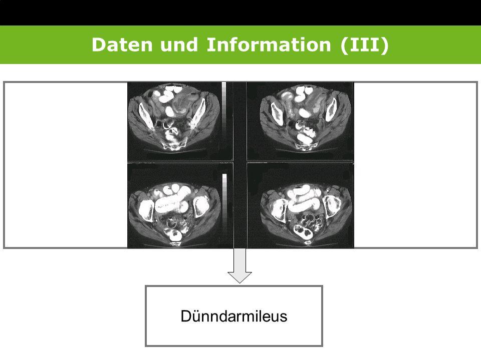 Daten und Information (III)