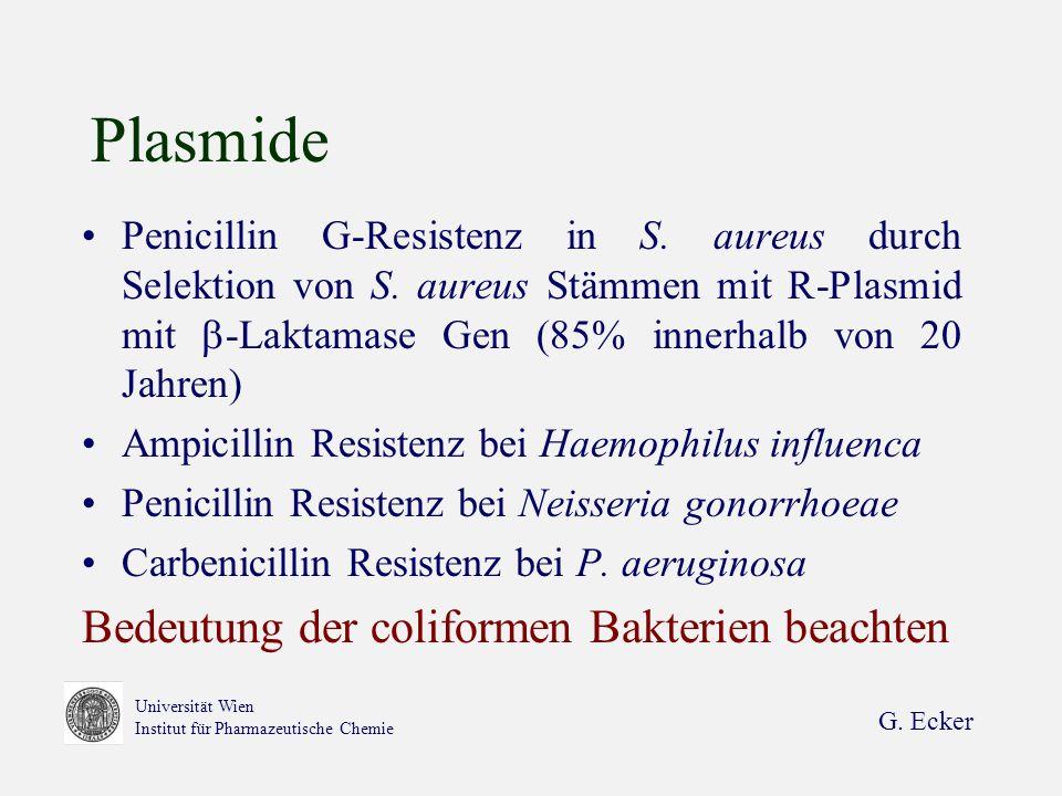 Plasmide Bedeutung der coliformen Bakterien beachten