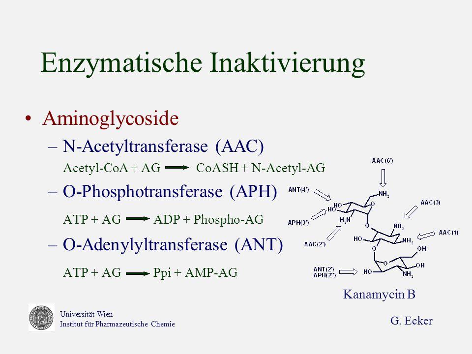 Enzymatische Inaktivierung