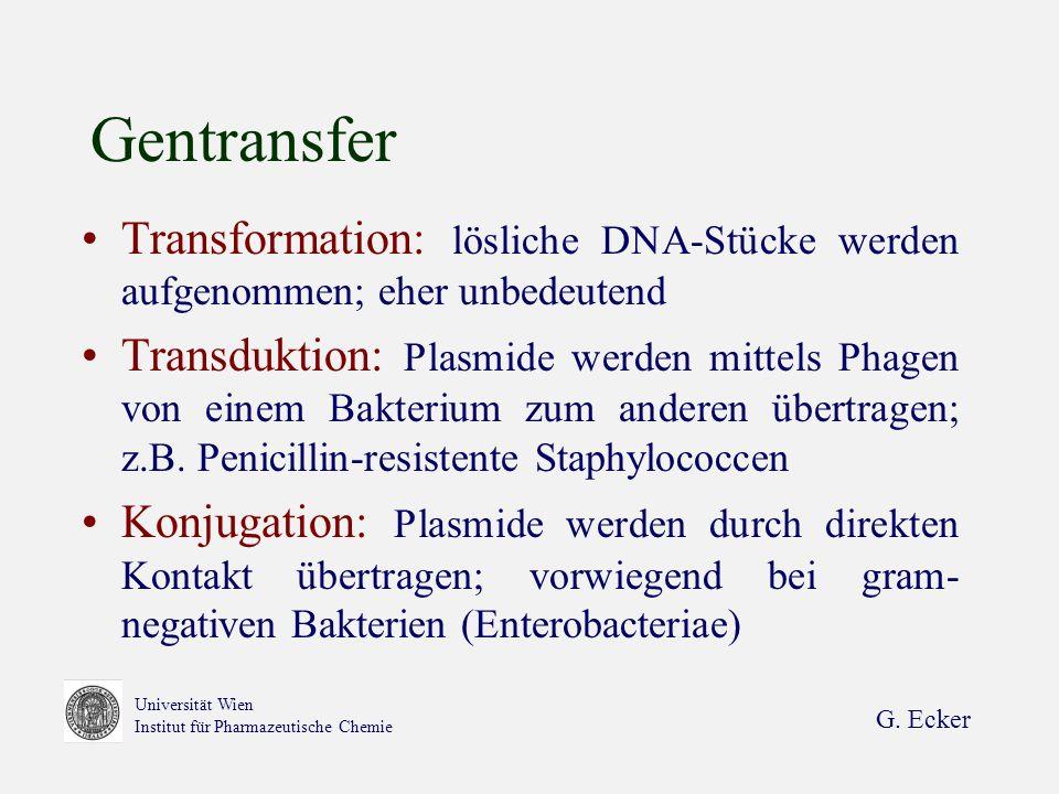 Gentransfer Transformation: lösliche DNA-Stücke werden aufgenommen; eher unbedeutend.
