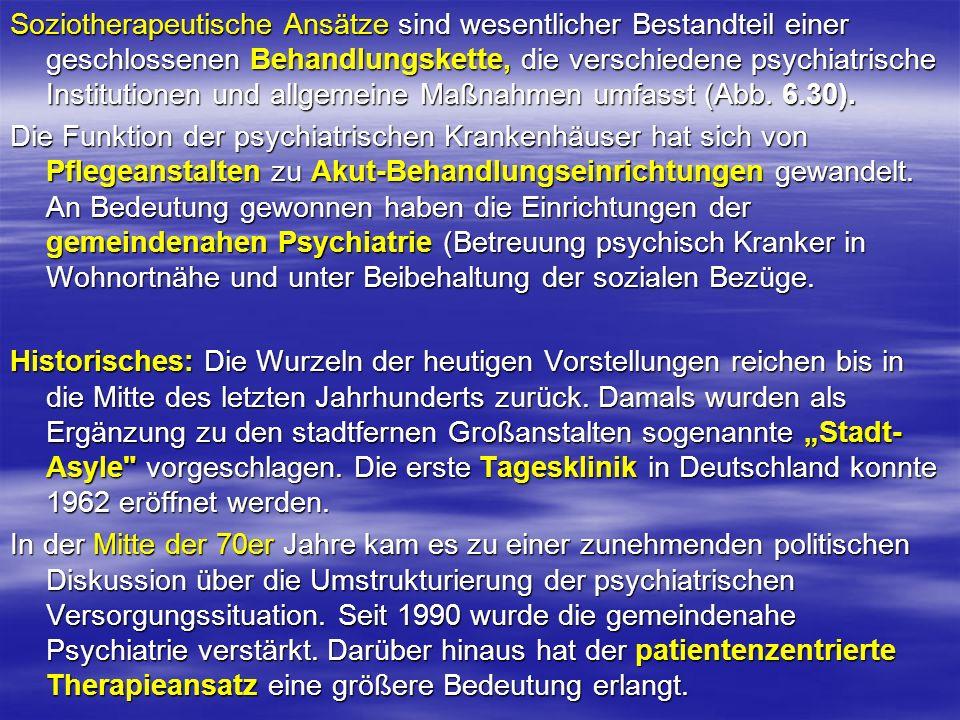 Soziotherapeutische Ansätze sind wesentlicher Bestandteil einer geschlossenen Behandlungskette, die verschiedene psychiatrische Institutionen und allgemeine Maßnahmen umfasst (Abb. 6.30).