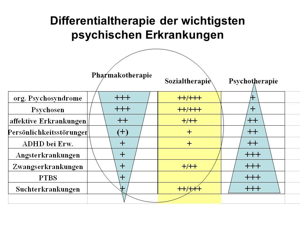 Differentialtherapie der wichtigsten psychischen Erkrankungen