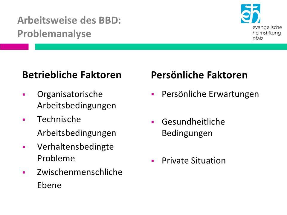 Arbeitsweise des BBD: Problemanalyse