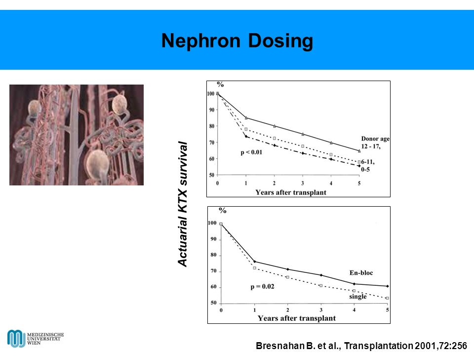 Nephron Dosing Actuarial KTX survival